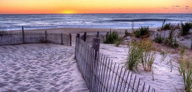 Lewes_Beachcrazy